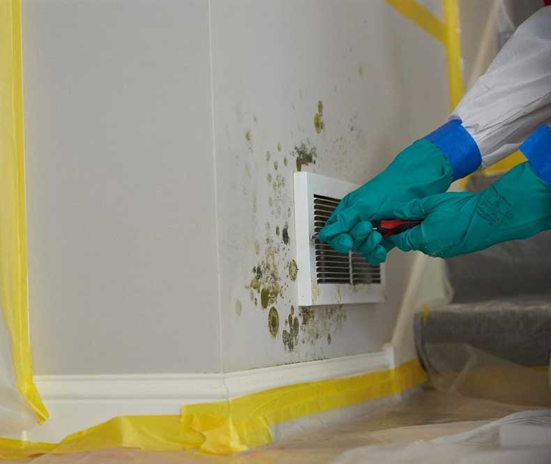 mold and mildew in your a/c system