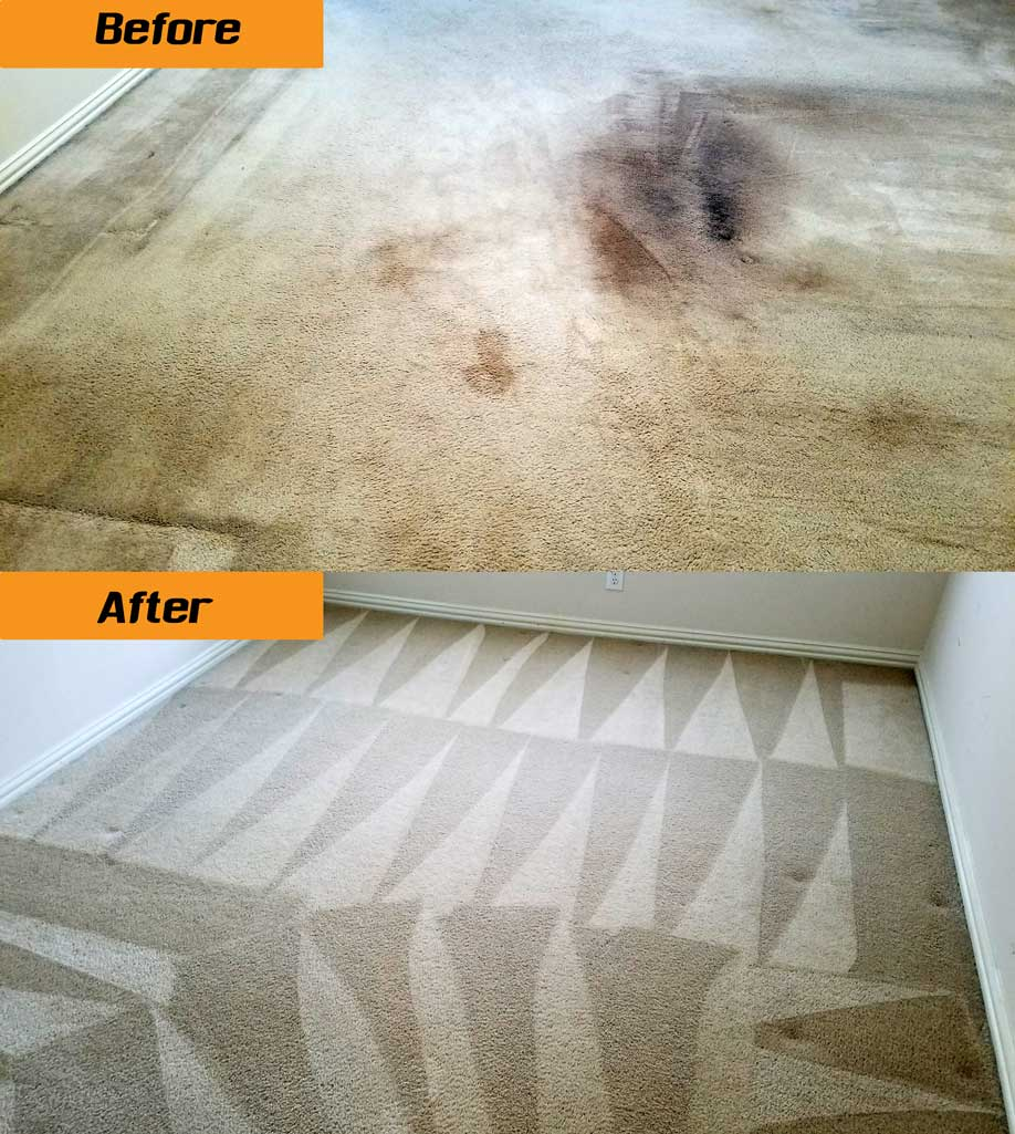 ProGeneralService Carpet Cleaning
